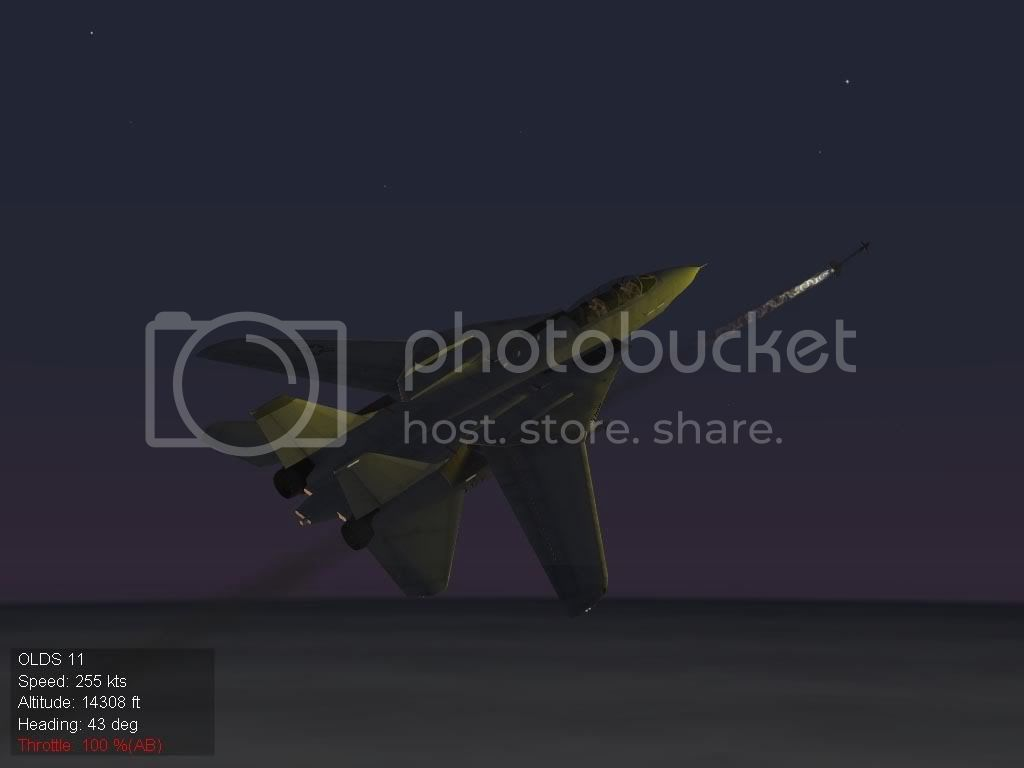 VF-84II.jpg