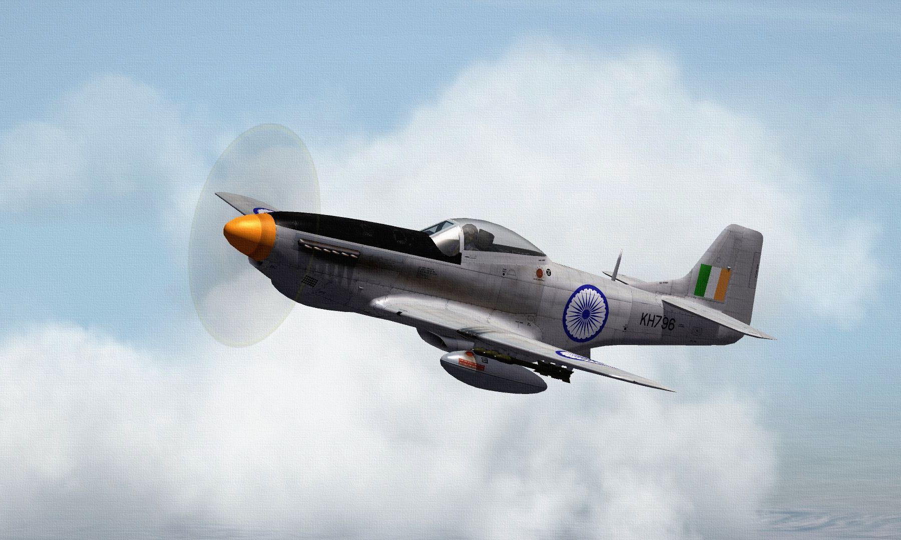 IAFP-51DMUSTANG03_zps7ba12d15.jpg