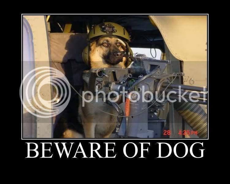 bewareofdog.jpg