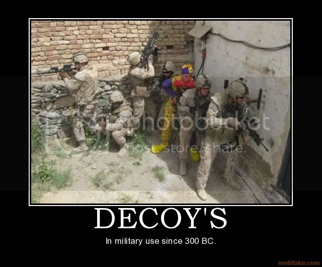 decoys.jpg