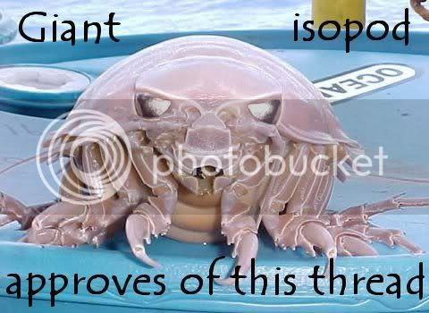 giant_isopod_approves.jpg