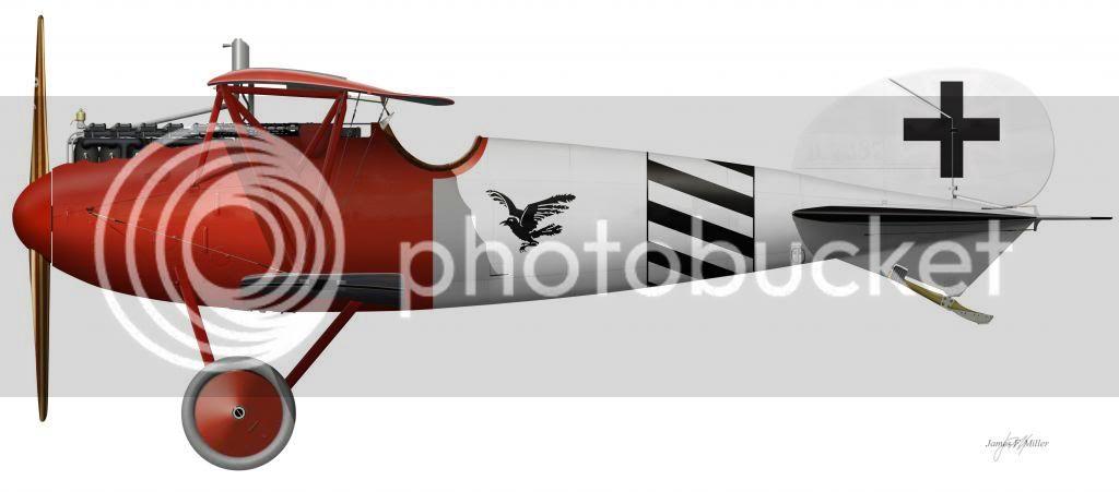 Albatros_DVa7387-17_zps9077a188.jpg