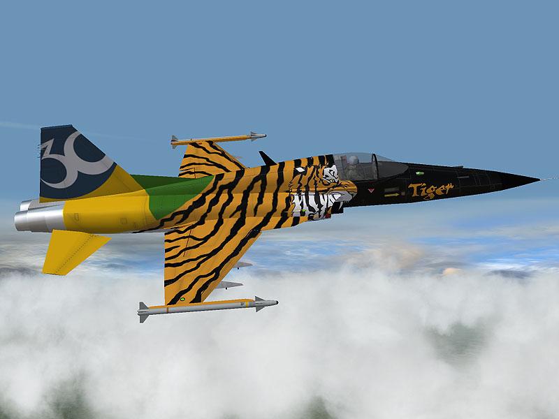 F-5E30anos5.jpg