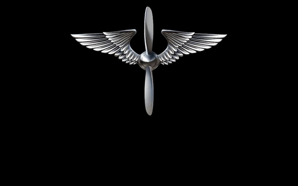 Rise_of_Flight_Logo.png