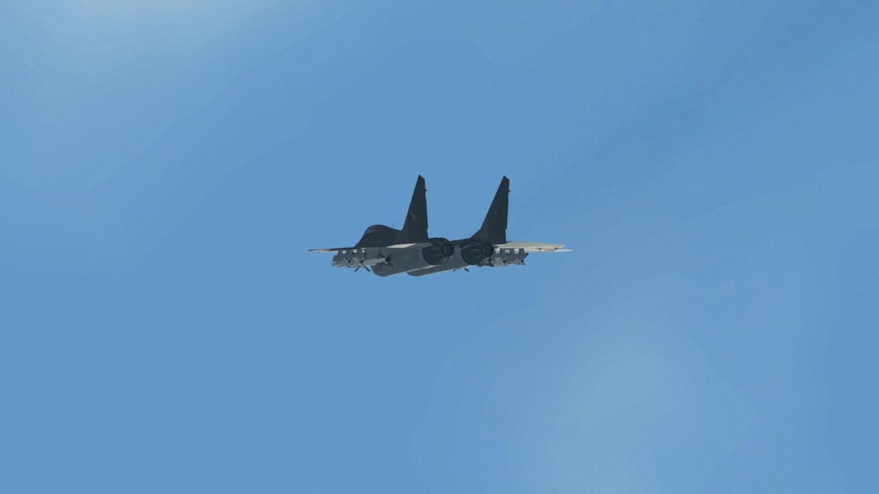 LSK-Mi-G-29-2.jpg
