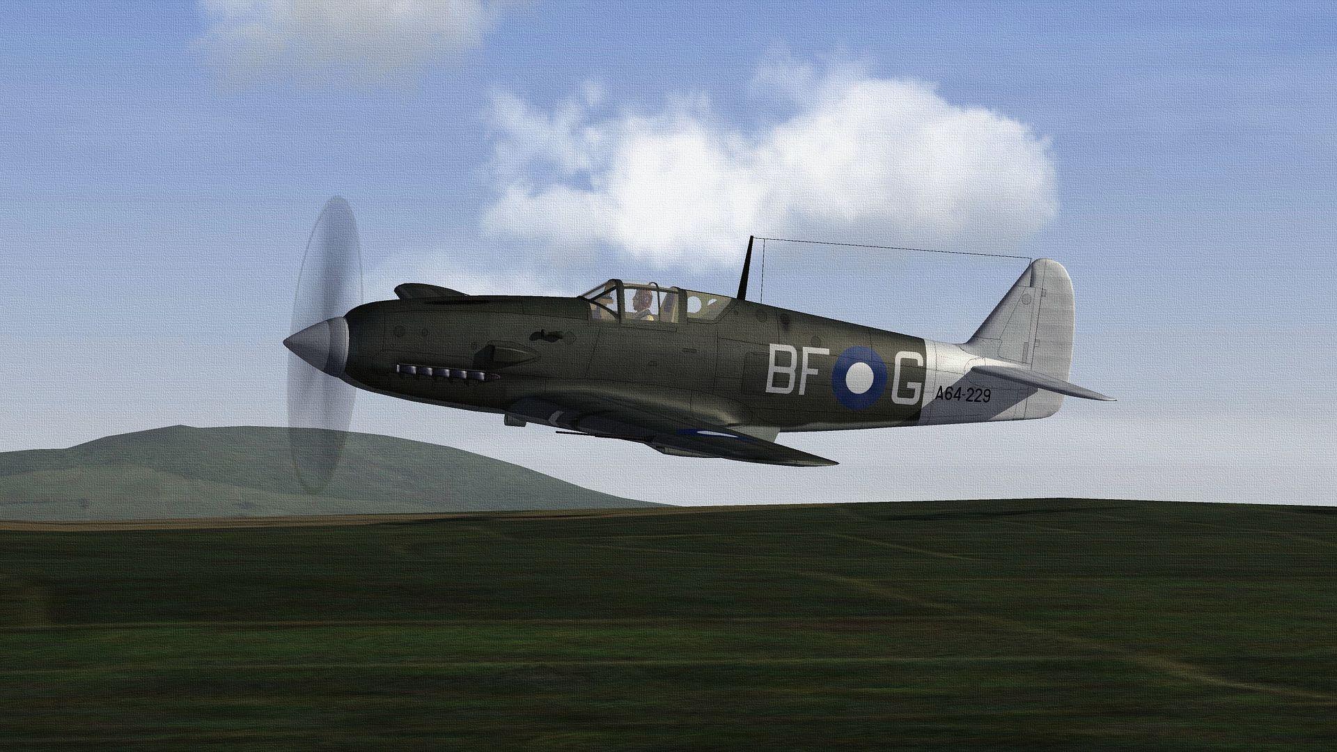 RAAF%20MIRO.02_zpswryz9ros.jpg