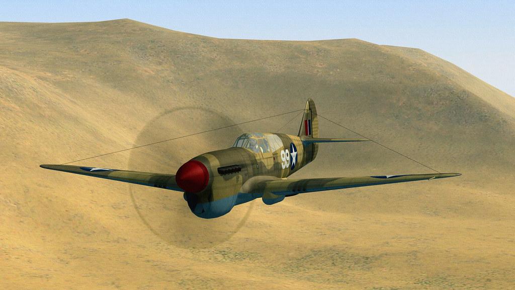 DHIMAR P-40F WARHAWK.02