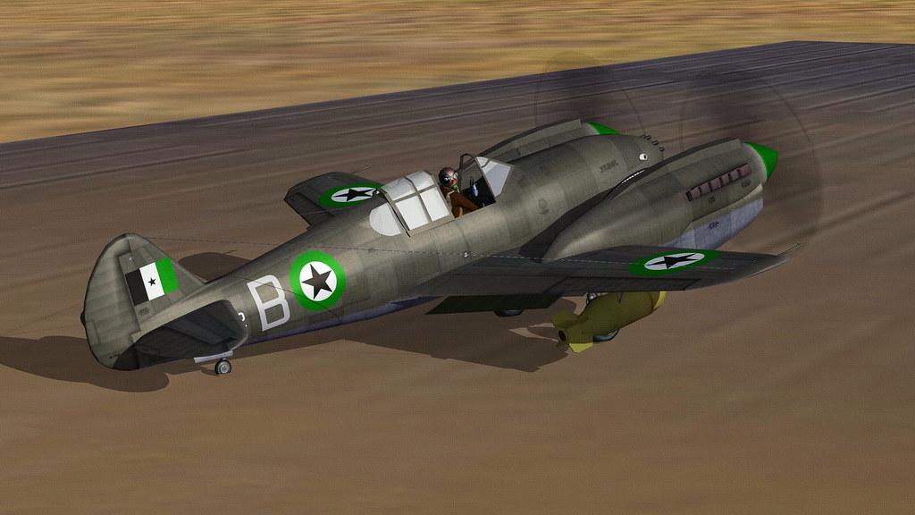 DHIMAR P-42D TWIN WARHAWK.01