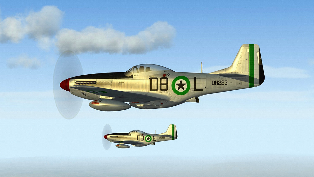 DHIMAR P-51D MUSTANG.02
