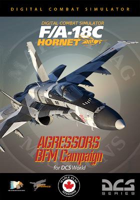 FA-18C-Aggressors-BFM_Camp_280.jpg