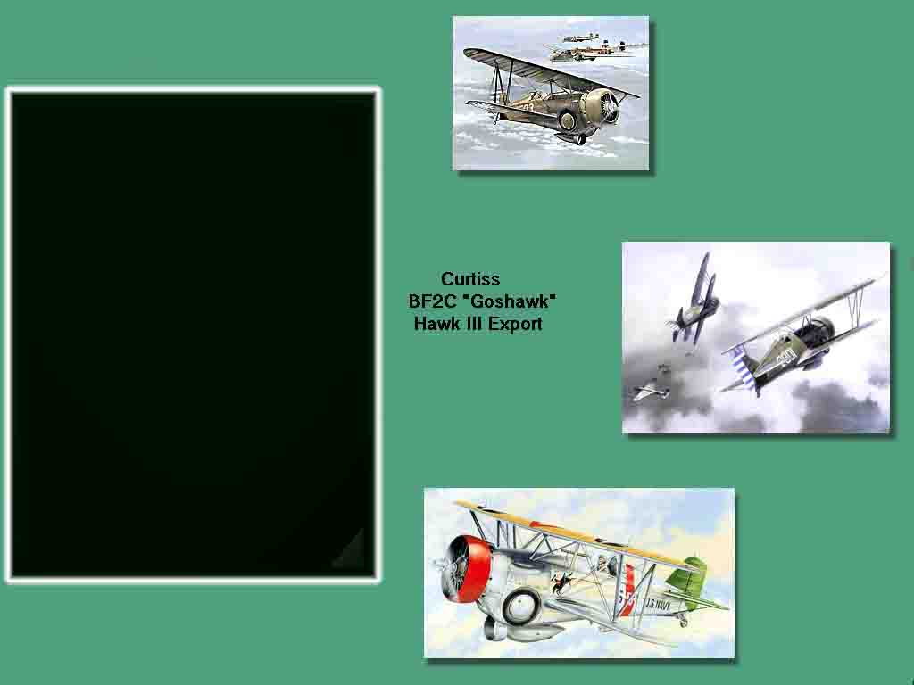 Curtis Hawk 3 Hangar Screen