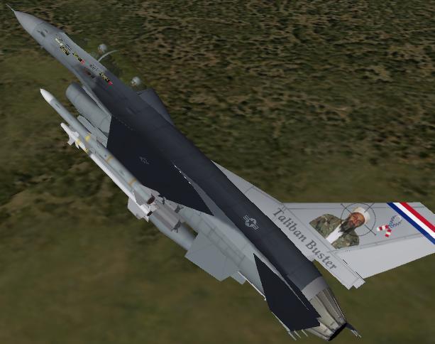 F-16B Taliban Buster