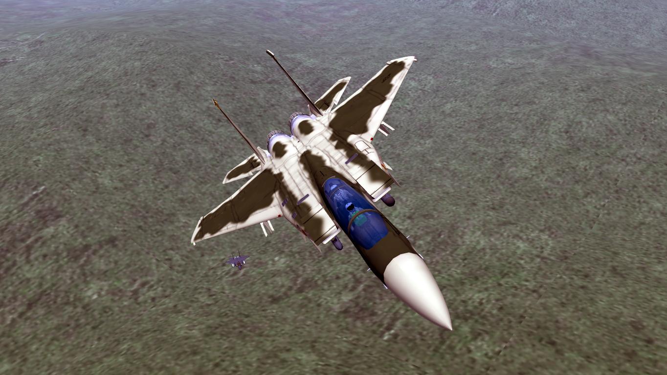 F-15E Agressor