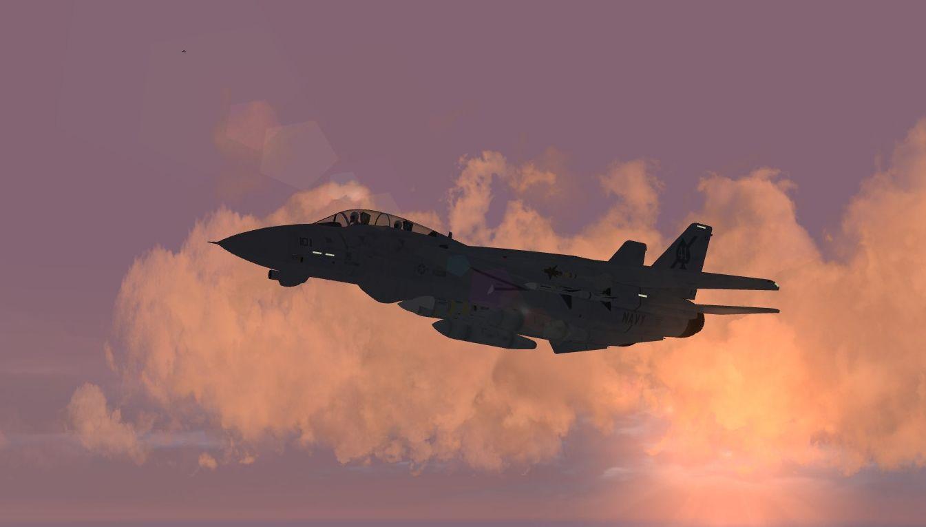 TMF F-14 Tomcat Superpack