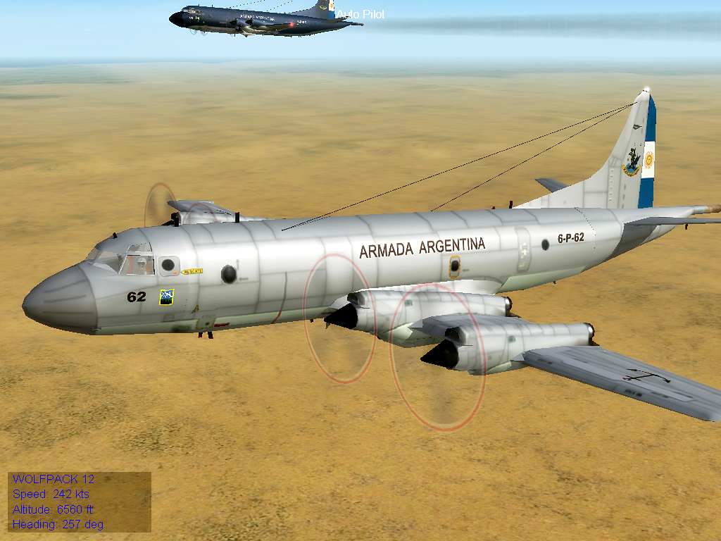 ARA Low-Viz P-3C Orion Armada Argentina