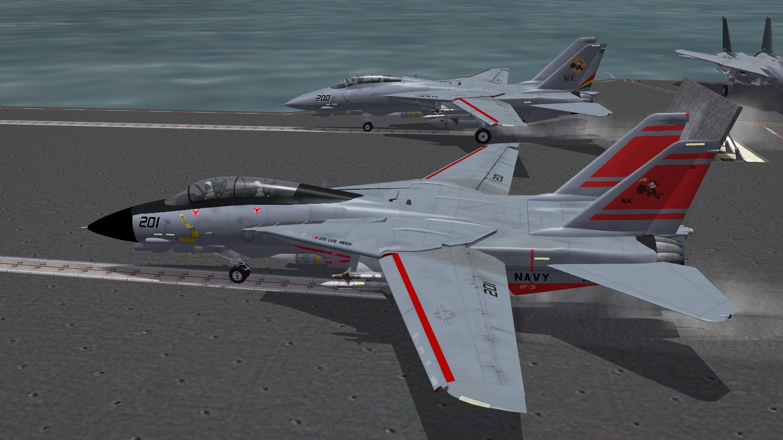 VF-11 and VF-31 F-14D