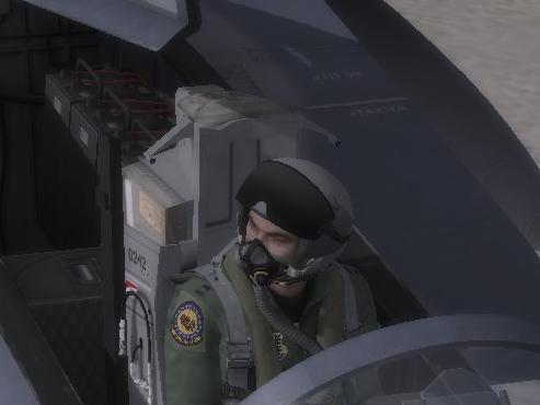 F-15C/E Default Skin Enhancements