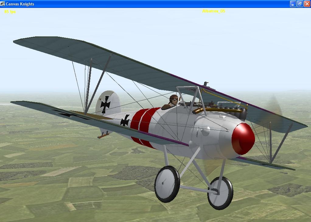 Robert Ritter von Greim Albatros D5