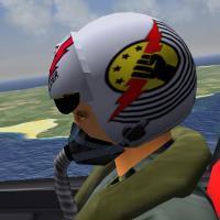SF2 TopGun F-14 Pilots: Maverick/Goose, Viper/Jester ...