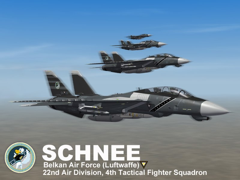 F-14D Schnee (Ace Combat Zero)