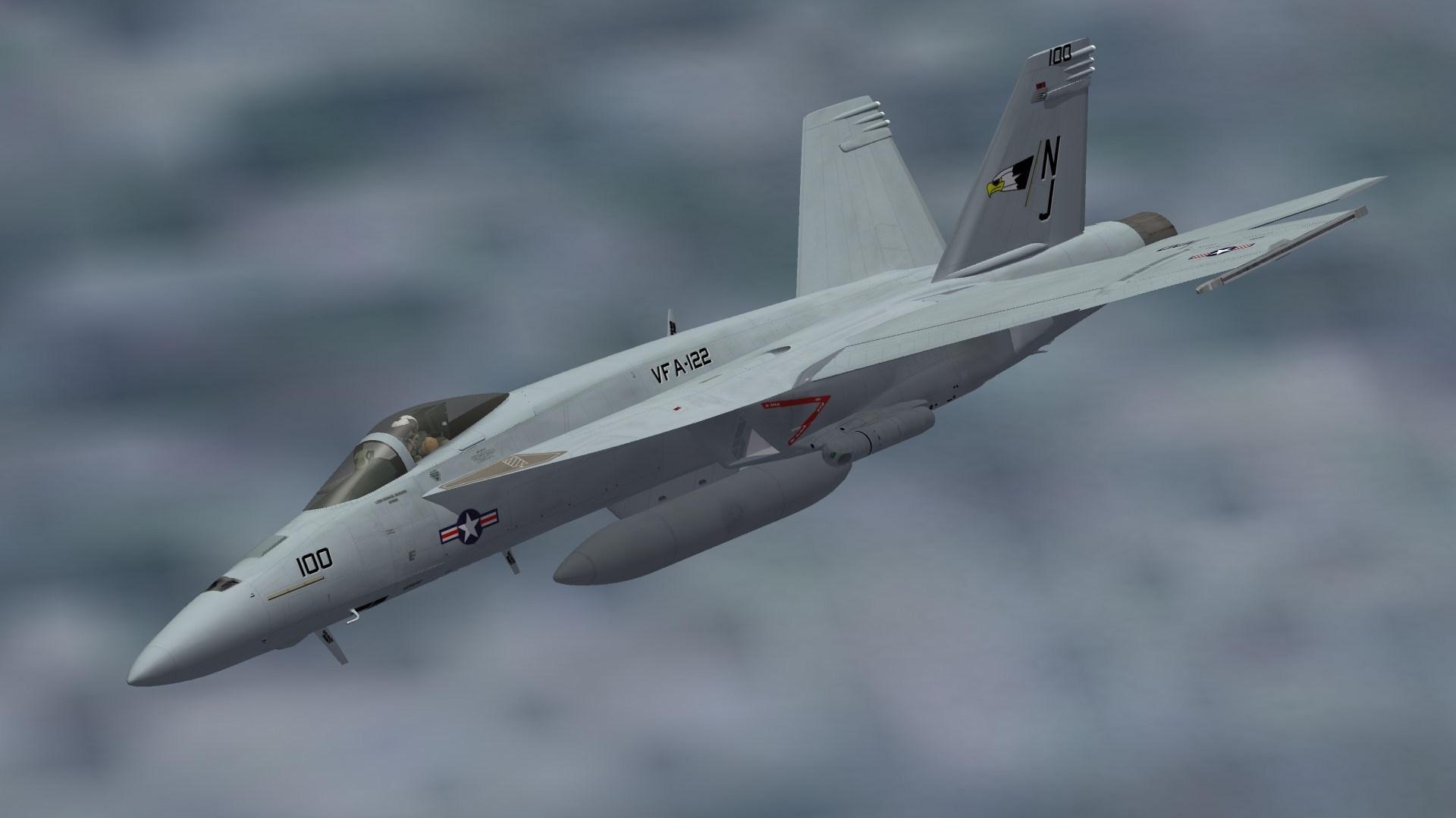 """F/A-18E VFA-122 """"CAG"""""""