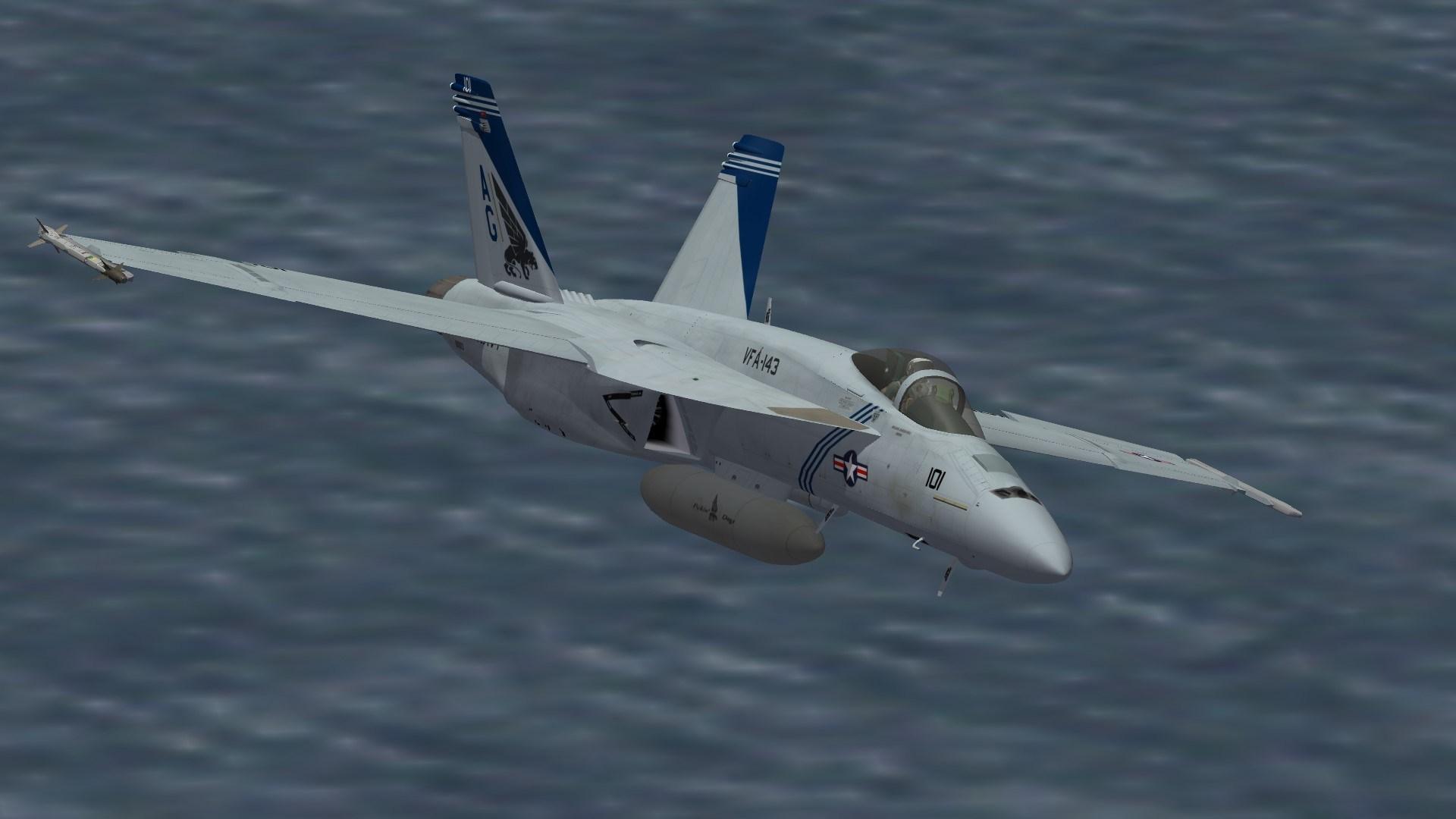 F/A-18E VFA-143 CO
