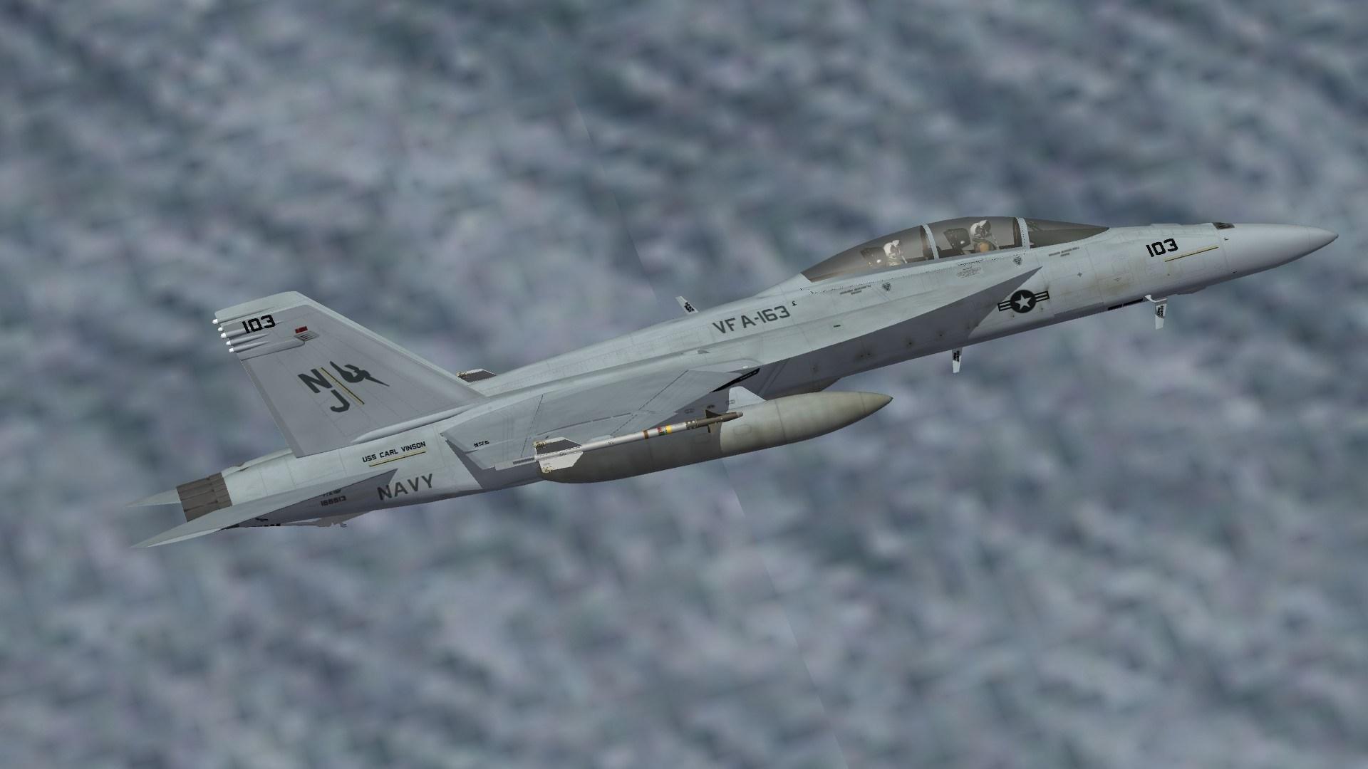 """[Fictional] F/A-18F """"VFA-163"""""""