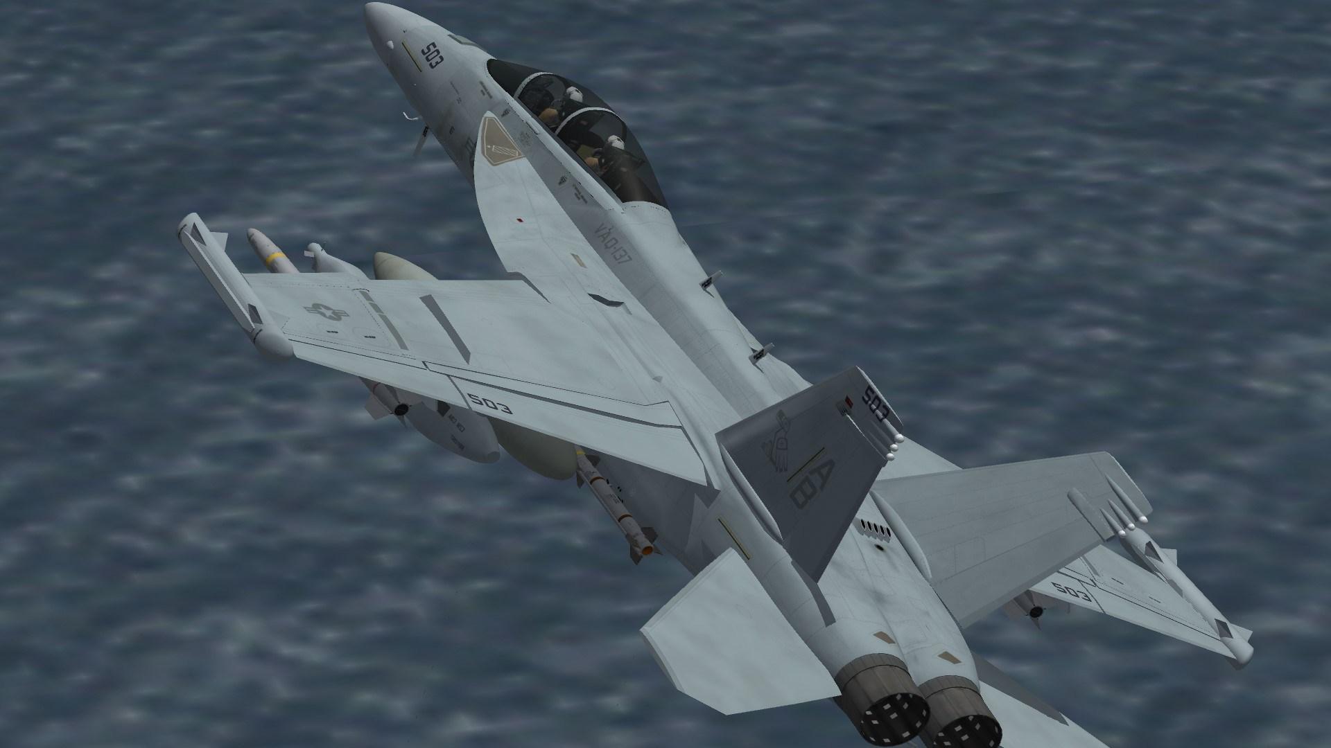 EA-18G VAQ-137 Line Jet