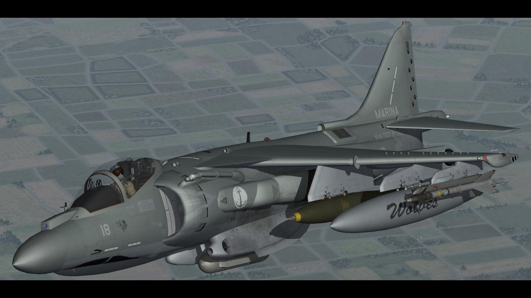 AV-8B Plus Harrier II (Marina Militare)
