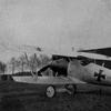 Kempf's Pfalz D.IIIa