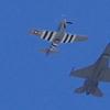F-16 Demo3.JPG