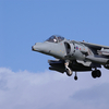 Harrierspecial_1.jpg