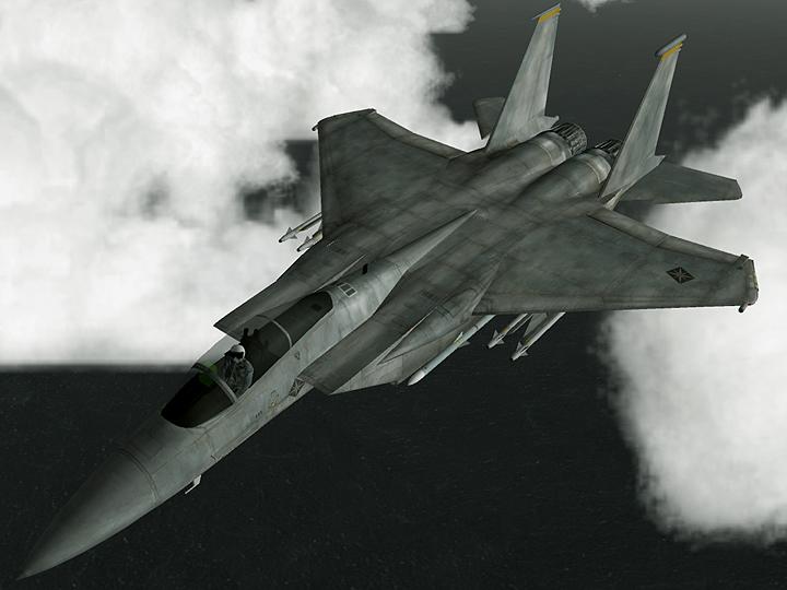 Navy Eagle #1