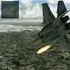 Navy Eagle #3
