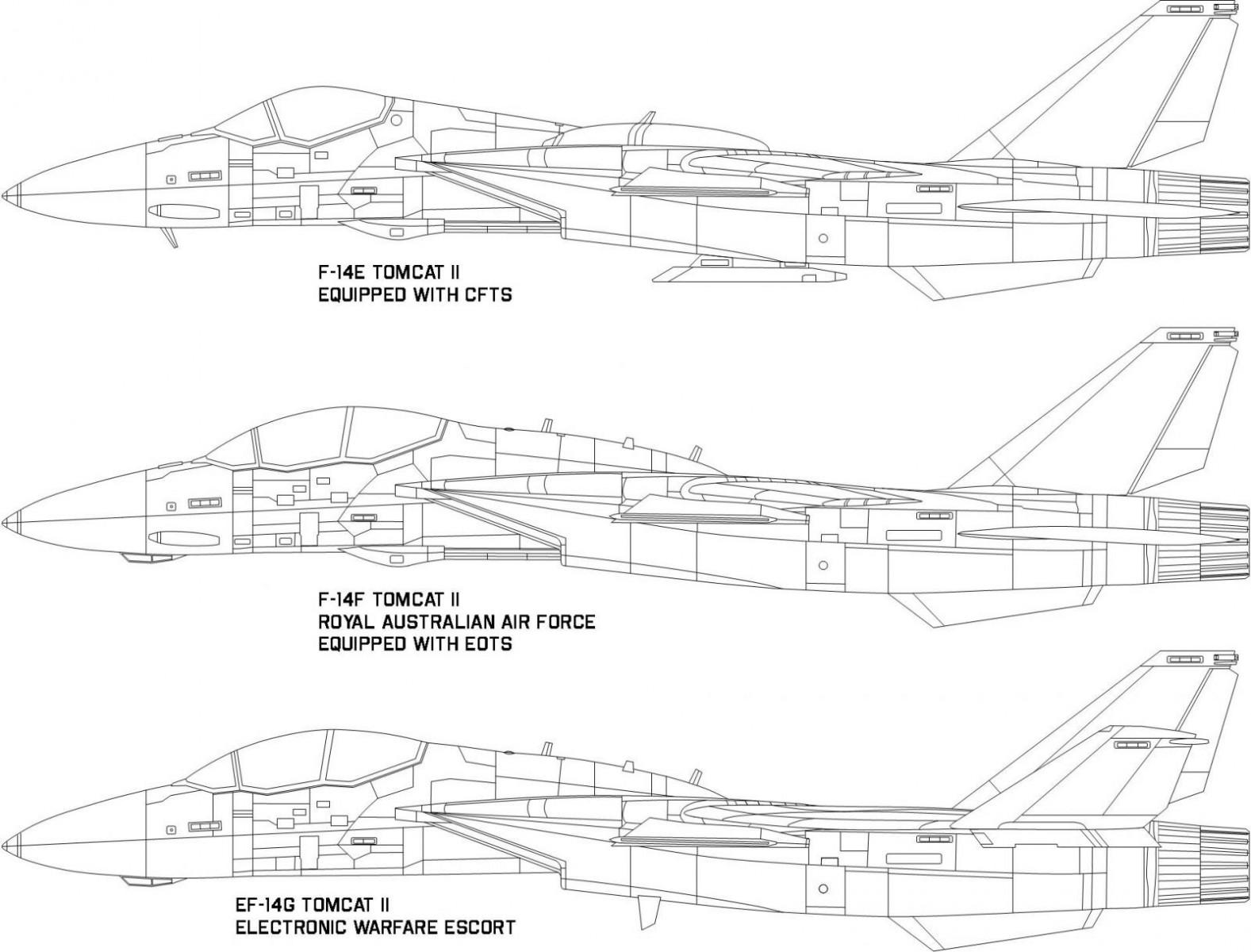 F-14 Tomcat II family side.jpg