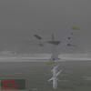 Damn lucky Albatros