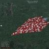 Red Camo.jpg