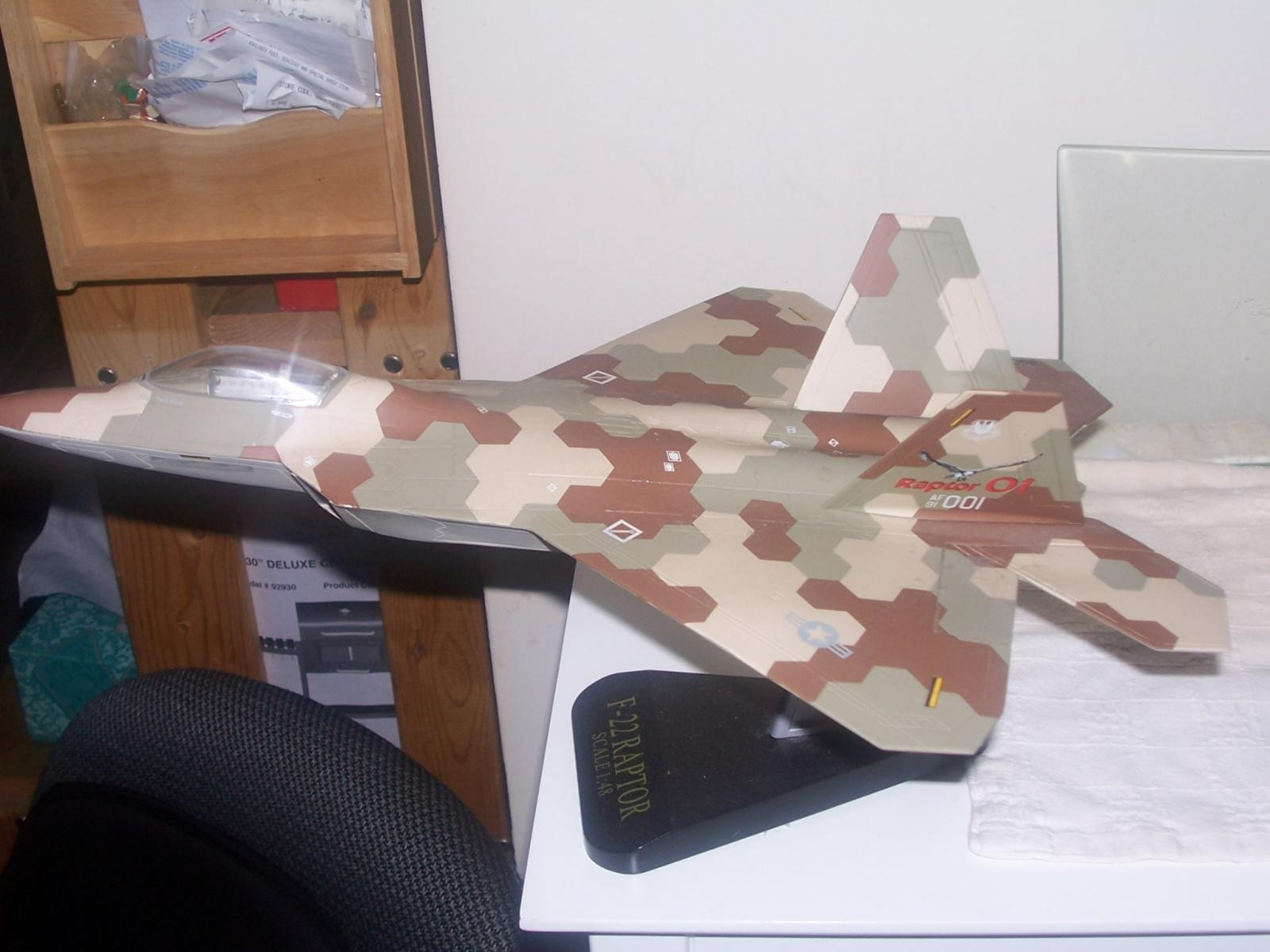 F-22 Camo