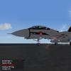 carrier skull squadrom f-14