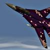 F-14D -ZIPANG-