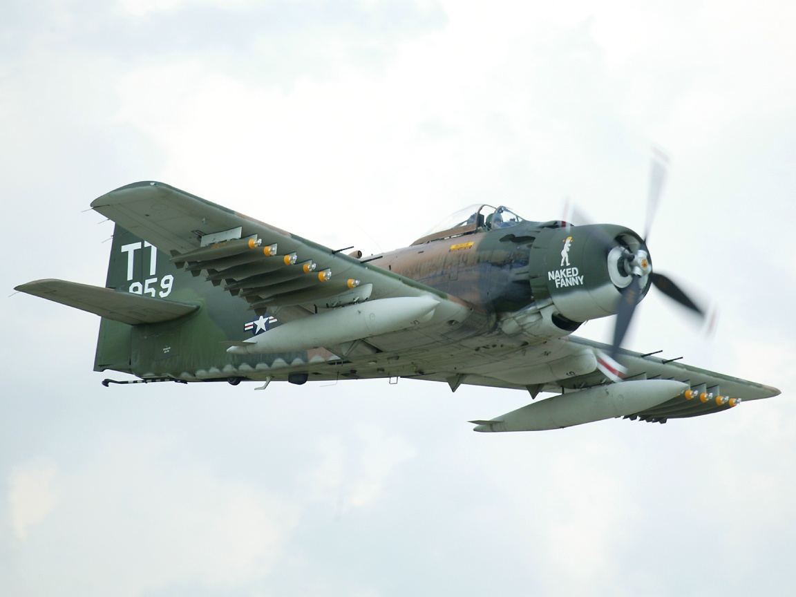 A-1h.jpg