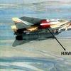 IRIAF F-14 with Hawk