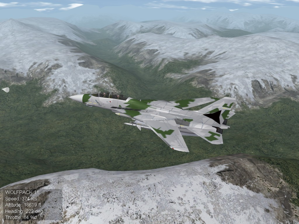 F-14J TMN NW.jpg
