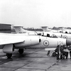 Royal Navy S.2A Buccaneers in anti-flash white