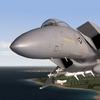 F15BlackSea100.JPG