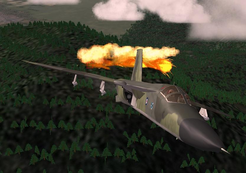 F111BladeSnakeNape106.JPG