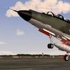 F101voodooCamo3.JPG