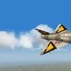Hornet squadron