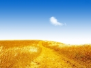 nature_022_1600x.jpg