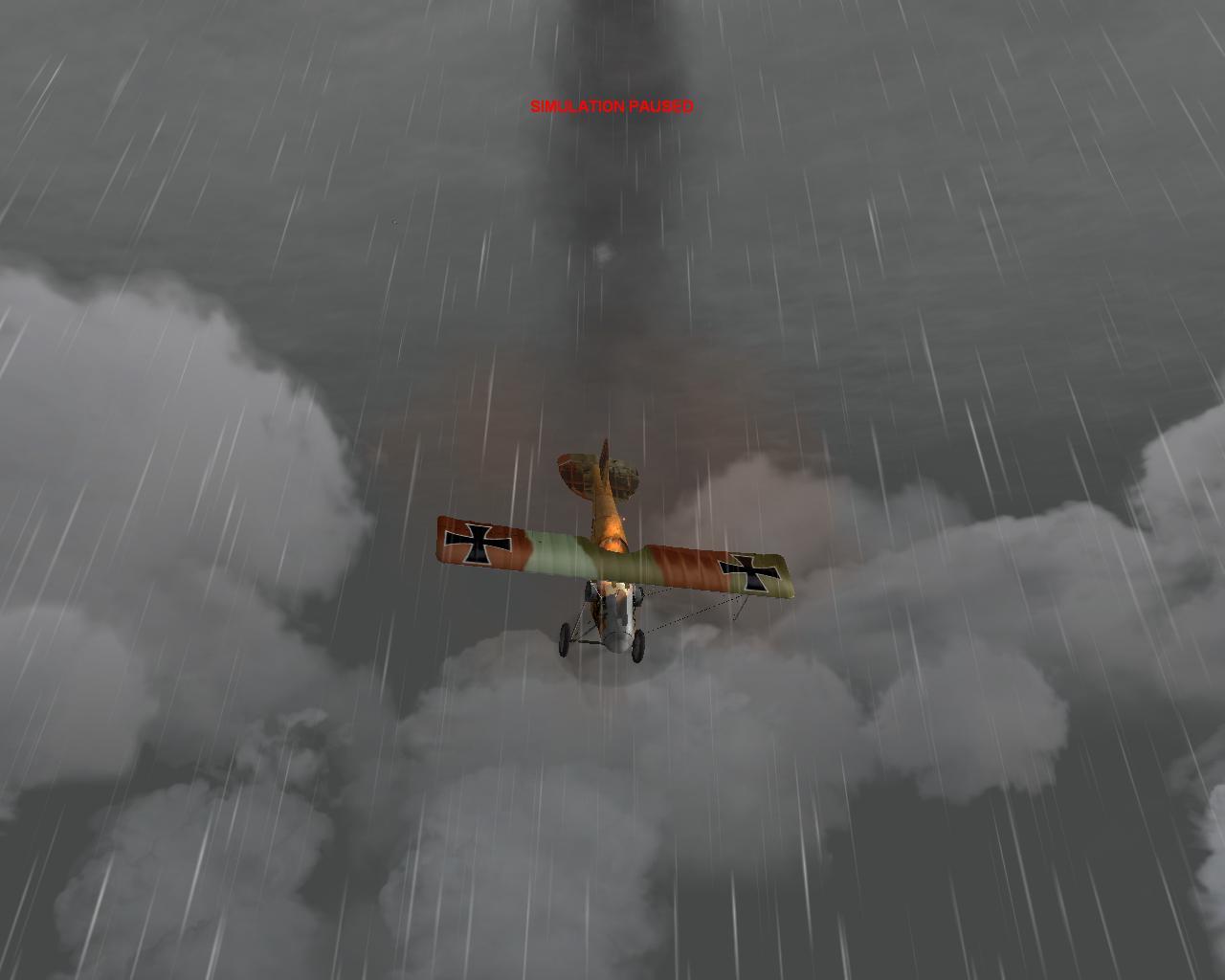 Albatross s  Burn so nicely